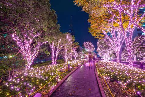 incredible winter light displays  tokyo time  tokyo