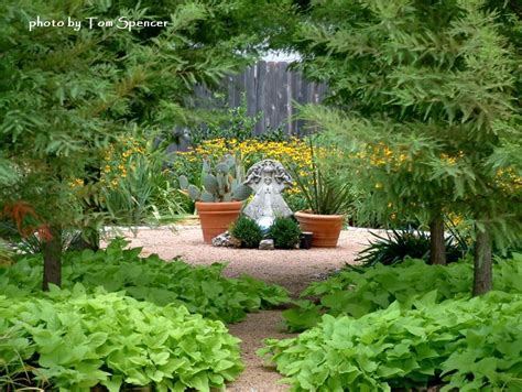 garden design courses garden ideas and garden design