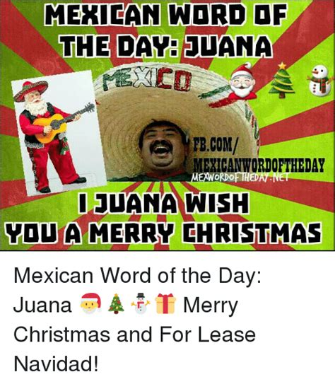 Mexican Christmas Meme - 25 best memes about for lease navidad for lease navidad