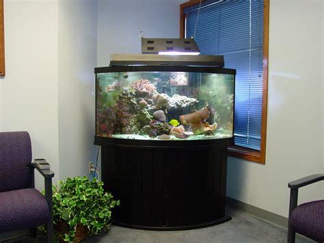 Office Fish Tank by Fish Aquarium Gallery Of Aquatic Designs Aquarium