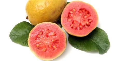 Madu Diet Sehat kontrol diabetes dengan makan buah jambu biji merdeka