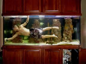 Home accessories fish tank decoration pictures fish tank decoration