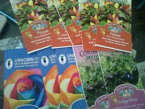 Benih Cabai Rainbow panduan cara menanam bibit rainbow fiorelshop