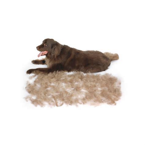 deshedding tool for dogs furminator hair deshedding tool for dogs