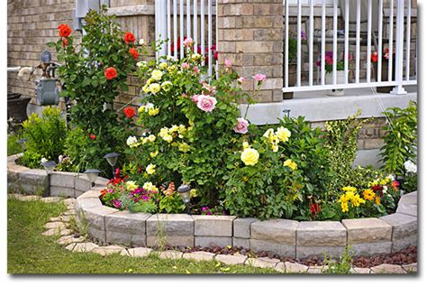 rices tree service landscaping services cleveland oh