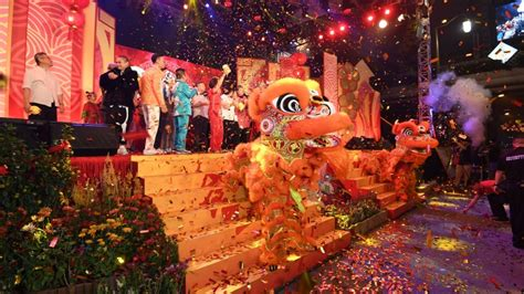 new year celebration in singapore 2015 celebrate lunar new year visit singapore au