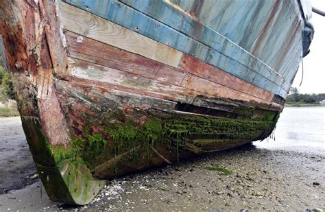 scow portland nz owner hopes to restore historic scow otago daily times