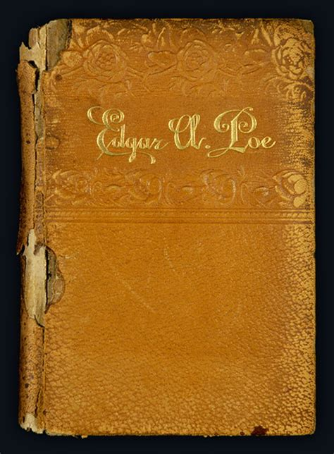 edgar allan poe bio book edgar allan poe book from 1882 cover poestories com