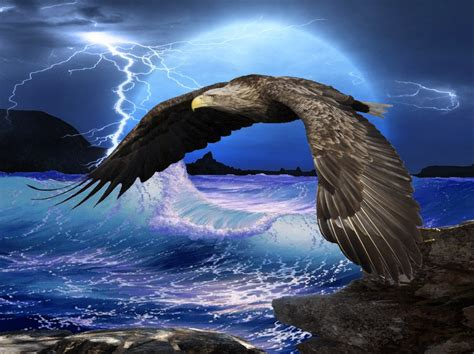 imagenes mitologicas eagle wallpaper and background image 1333x996 id 274859