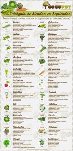 calendario del huerto urbano en setiembre calendarios pinterest beneficios de la albahaca en el huerto materiales y