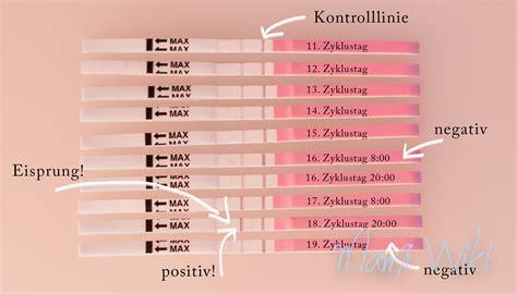 eisprung wann befruchtung ovulationstest mamiwiki
