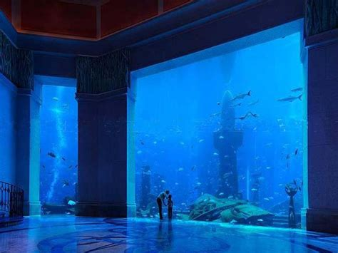 a closer look at dubai s underwater hotel angelic hugs