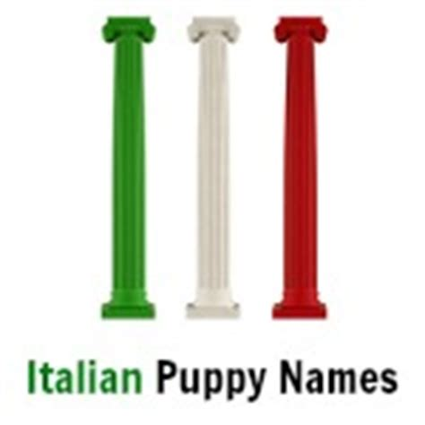 italian puppy names popular names there s something for every pup