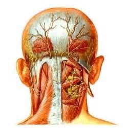 ganglion chiroenergie