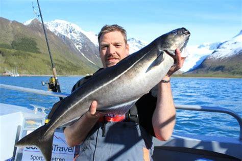 vaarbewijs noorwegen cordes travel visreizen visreis noorwegen ijsland