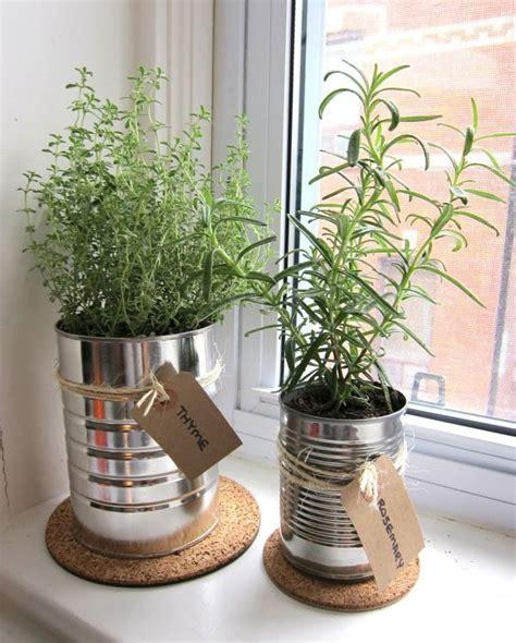 herb garden diys    favorite flavors  hand