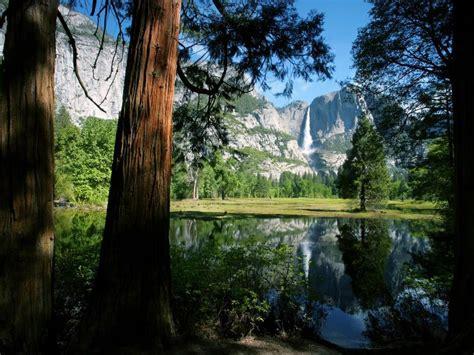 imagenes lindas naturaleza image gallery imagenes de naturaleza hermosa