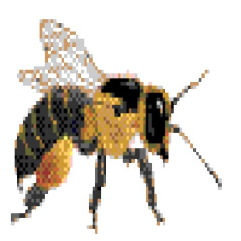 backyard beekeepers association cropped bee200 1 gif backyard beekeepers association