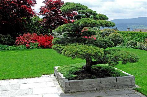 Hängestuhl Garten by Wuhrmann Garten Ag Japangarten
