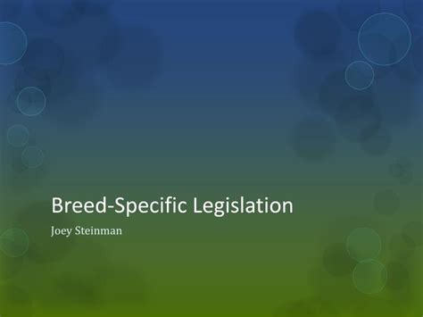 Essay Against Breed Specific Legislation by Breed Specific Legislation Essay