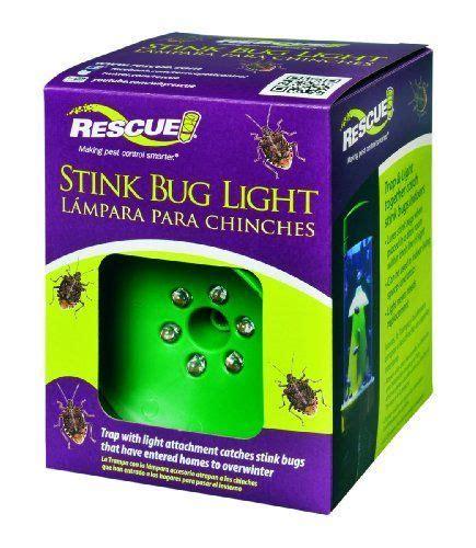 best bug light 51 best stink bug traps images on pinterest stink bug