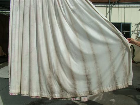 Mould On Curtains curtain cleaners co nz