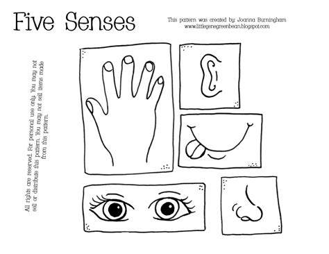 coloring pages five senses preschool little gene green bean all about me unit 2