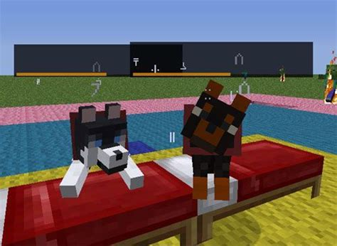 mods in minecraft dogs dog cat plus mod 1 7 10 1 7 2 1 6 4 1 6 2 minecraft mods