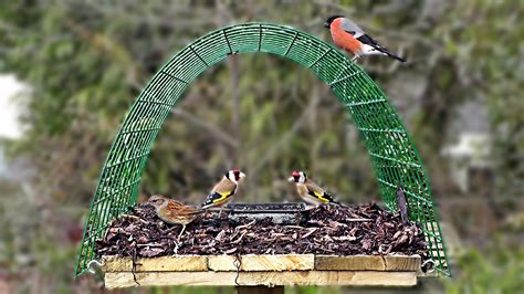 pigeon proof bird table perfect for goldfinch bullfinch