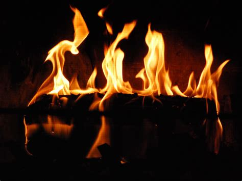 These Are Just Flames Burning In Your Fireplace by Calorie Is A Calorie Is A Calorie Part I Primalmeded