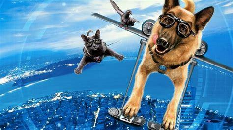 film recommended untuk ditonton 7 film tentang kucing yang menarik untuk ditonton