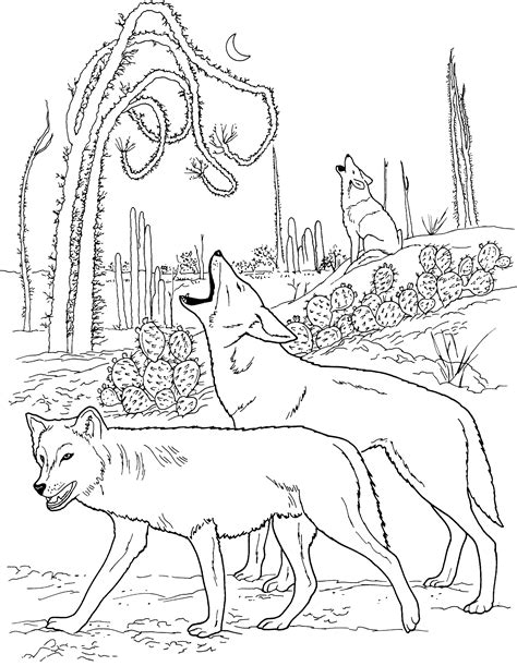 coloring books for wolves more advanced animal coloring pages for teenagers tweens boys zendoodle animals wolves practice for stress relief relaxation books free wolf coloring pages