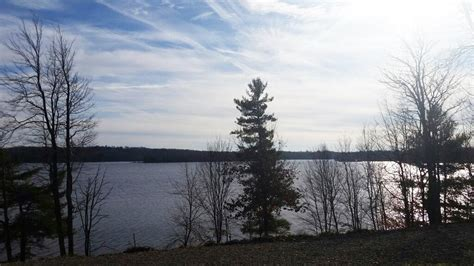 Black Lake Ny Fishing Cabins by Land Bordering State Forest In Black Lake Ny