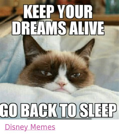 Grumpy Cat Sleep Meme - keep your dreams alive go back to sleep disney memes