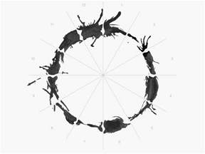 Home Design Express Llc designing an alien alphabet for arrival subtraction com