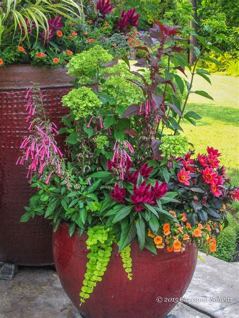 Container Flower Gardens 703 Best Container Gardening Ideas Images On Pots Gardening And Container Plants