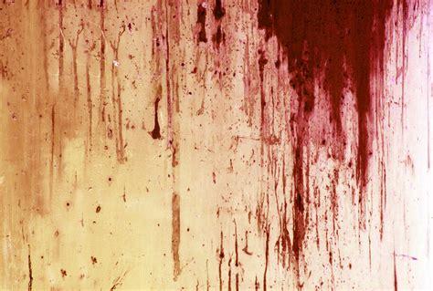 r 234 ver de sang signification des r 234 ves