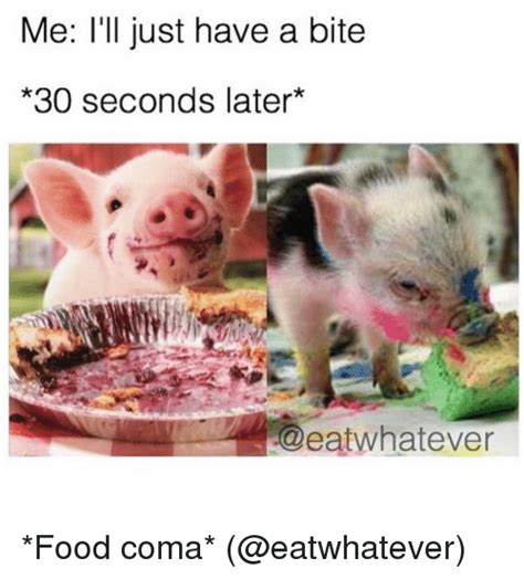 Food Coma Meme - 25 best memes about food coma food coma memes