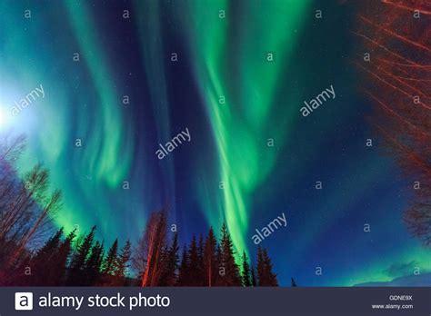 chena springs northern lights chena springs fairbanks stock photos chena
