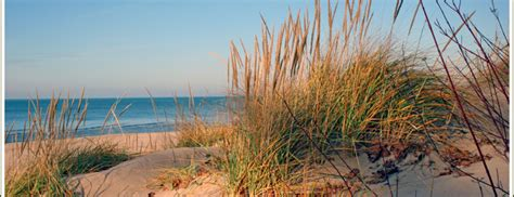 lake michigan beach house rentals lake michigan vacation rentals cottages for rent lake michigan rental cottages