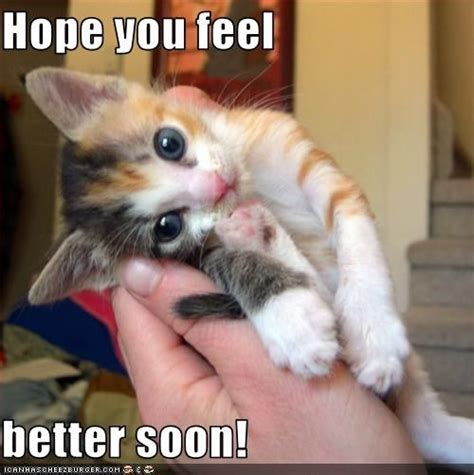 feel better you feel better soon pictures so and feel better