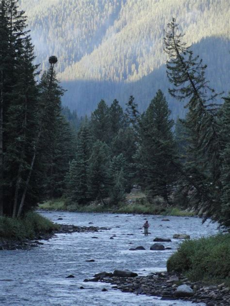 fishing the gallatin river montana watching for fish on the gallatin river big sky montana