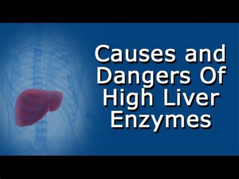 liver enzymes high high liver enzymes causes and dangers