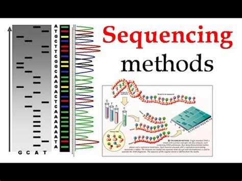 illumina sequencing animation dna sequencing methods