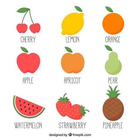 fruit vector variedad de frutas dibujadas a mano descargar vectores