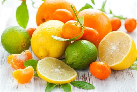 fruit cocktail tree popular indoor fruit trees indoor citrus and fruit trees