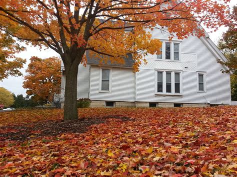 fermilab s village houses and the large hadron collider throwback to autumn news