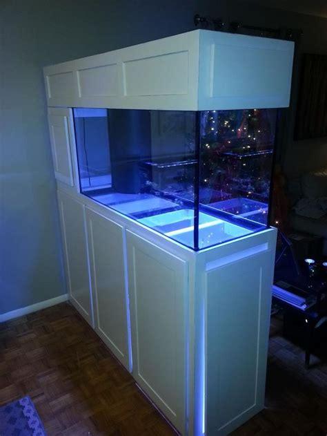 aquarium design brisbane as 25 melhores ideias de 55 gallon aquarium stand no