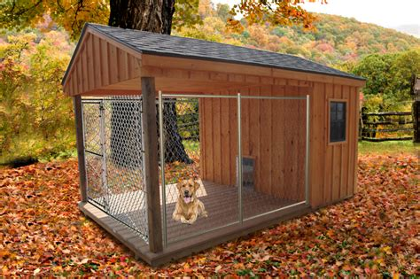 dog house with fence cage type outdoor dog house pinx pets
