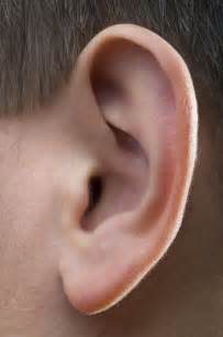are there lymph nodes the ear answers on healthtap